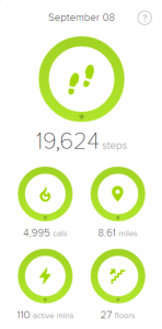 My Fit Bit Step Count for Hurricane Irma 2017