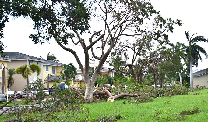 Disaster Area Hurricane Irma 2017